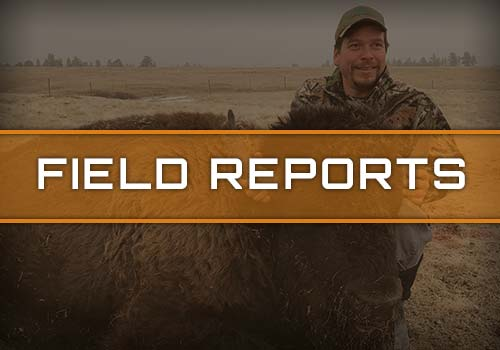 Prairie Highlands Lodge Field Reports